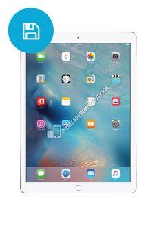 iPad-Pro-12,9-Software-Herstelling